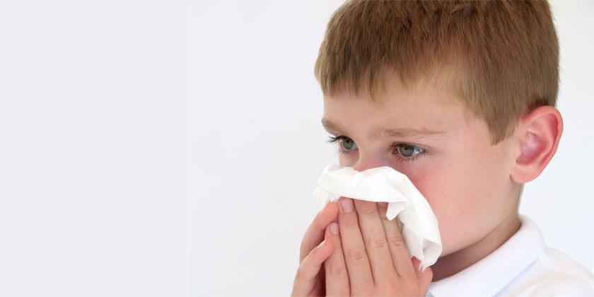 Los coronavirus 229E y OC43 causan síntomas de resfriado.