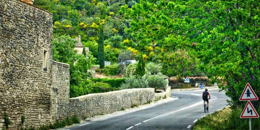 Ciclistas en la carretera con gran vegetación al fondo.
